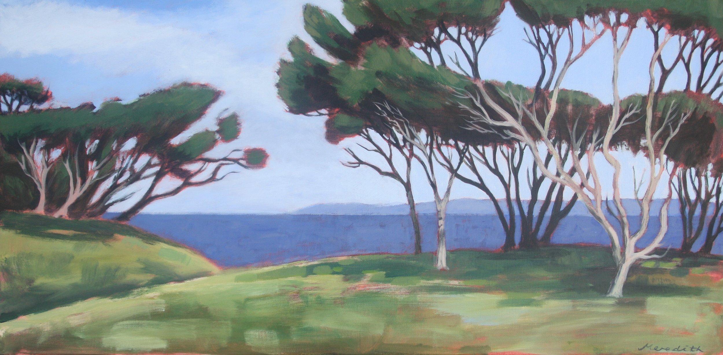Manuka III, Wharariki, Golden Bay  (2017). Acrylic on canvas 380mm x 760mm