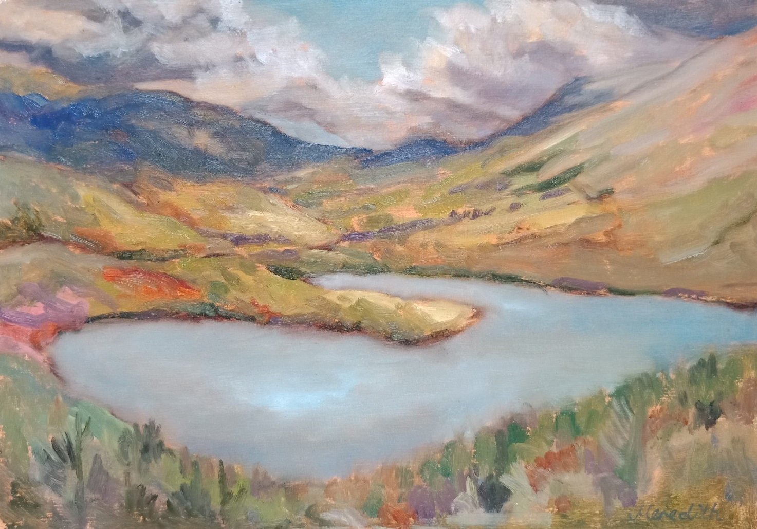 54. Lake Rotoiti from the Base of Mt. Robert. Oil on Arches paper.jpg