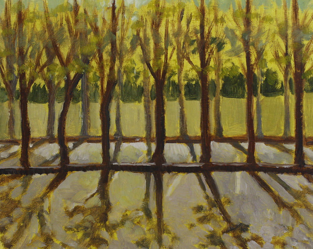 Saxton Carpark Trees  (2019, Week 14). 205 mm x 250 mm. Oil on Panel.