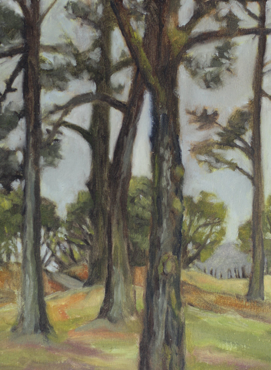 Tahunanui Trees  (2019, Week 11). 305 mm x 230 mm. Oil on Paper.