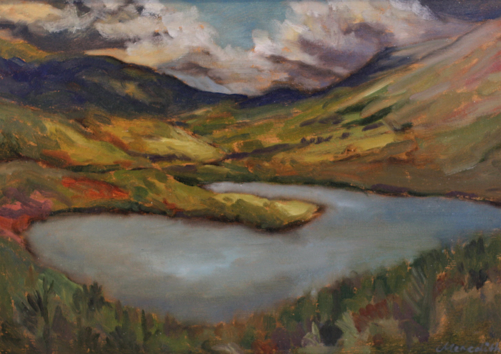 Lake Rotoiti from the Base of Mount Robert  (2018). 290 mm x 410 mm. Oil on Paper (Framed).