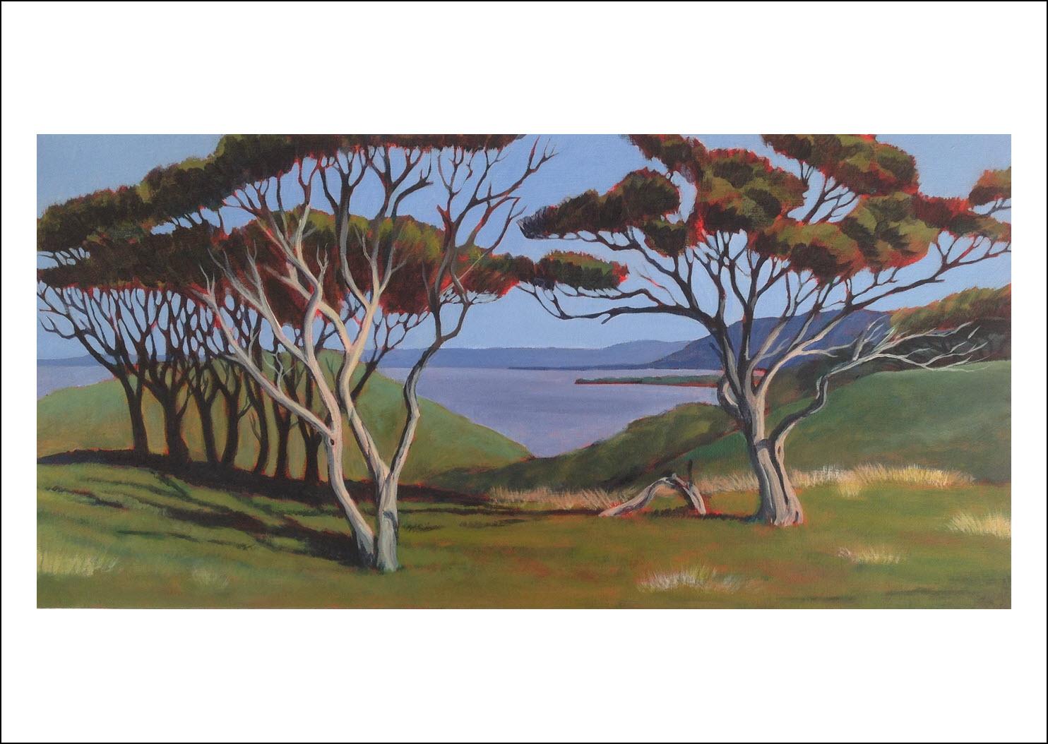 6. Manuka II Wharariki, Golden Bay