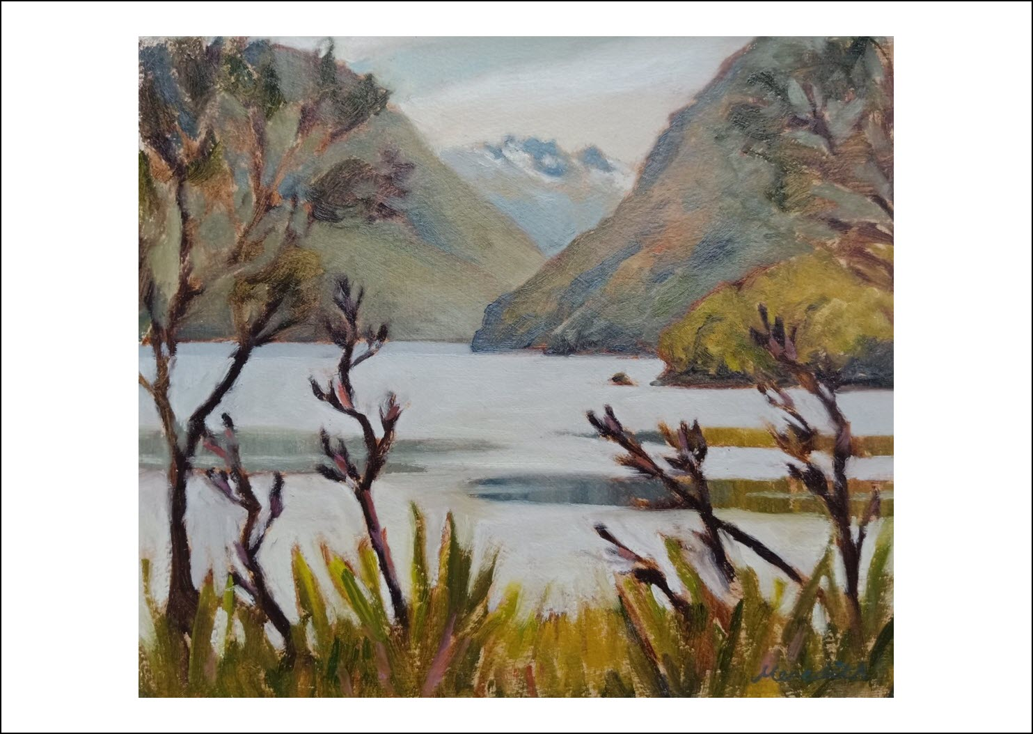 55. Lake Rotoiti Through Flax