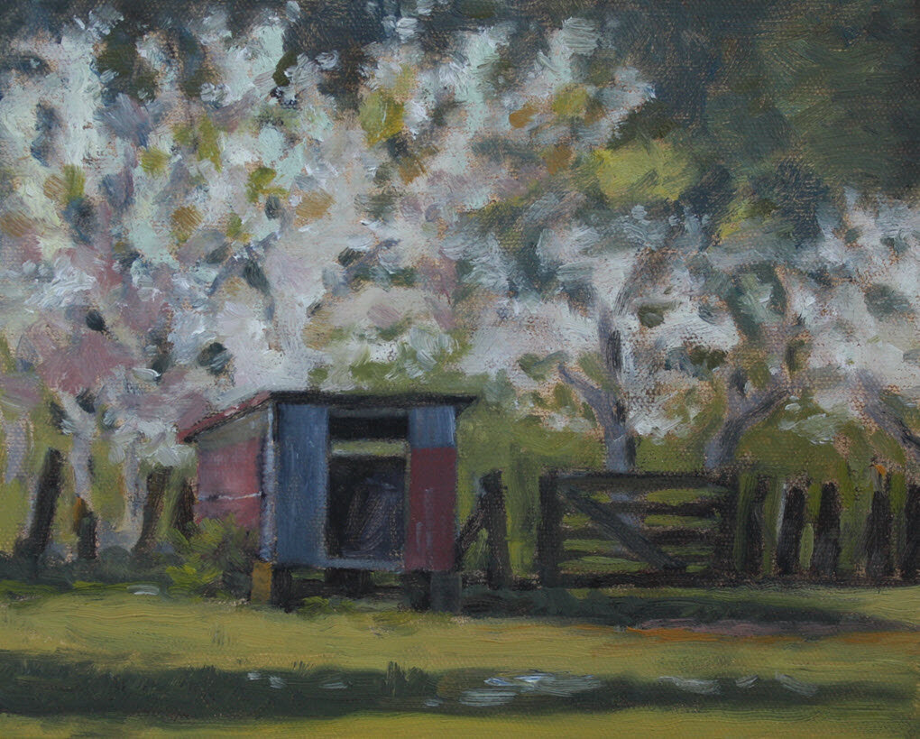 The Orchard Calf Shed, The Thorpe Farm, Golden Bay  (2019, Week 36). 200 mm x 255 mm. Oil on Canvas.
