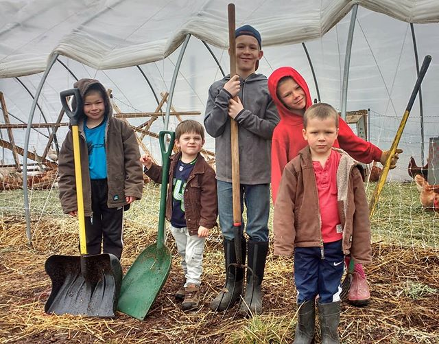 Meet Your Farmers: These hard working young men and boys were hard at it today with shovels and pitch forks.  A hours worth of hard work builds solid character into these young men. Ok, the good attitude isn't always there as evident on one little guys face, but that's ok.  #abundantfamilypastures #localfarm #regenerativefarming #connectwithyourfarmer #connectwithyourfood #spokanefarming #pasturefarming #knowyourfarmer #knowyourfood #spokanefood #pasturedeggs #localhens #commumityfarming #familyfarm #realfood #paleo #hardwork #boyswillbeboys
