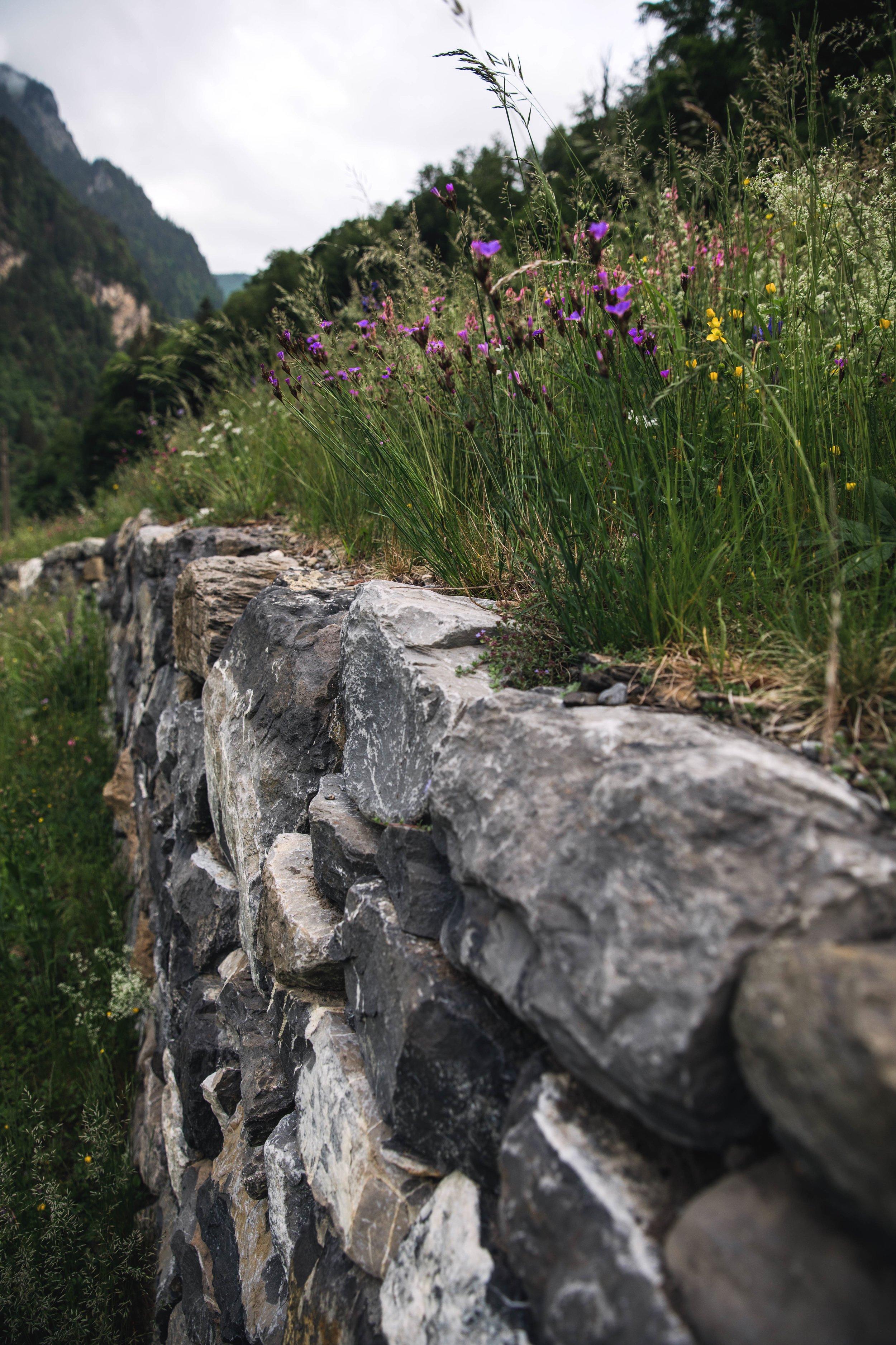 trockenmauern - 16.jpg