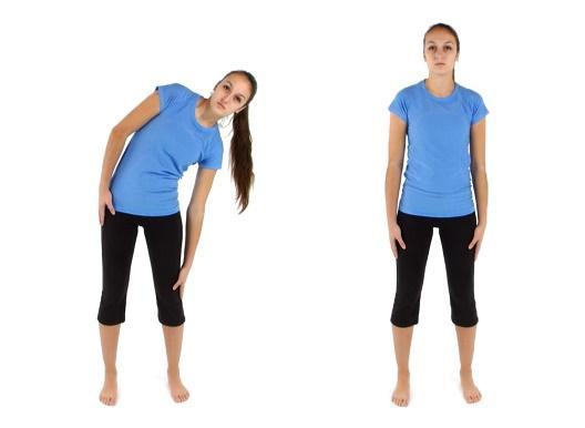 exercises for back pain.jpg