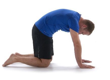 exercises for back pain 3.jpg