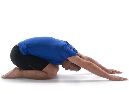 exercises for back pain 4.jpg