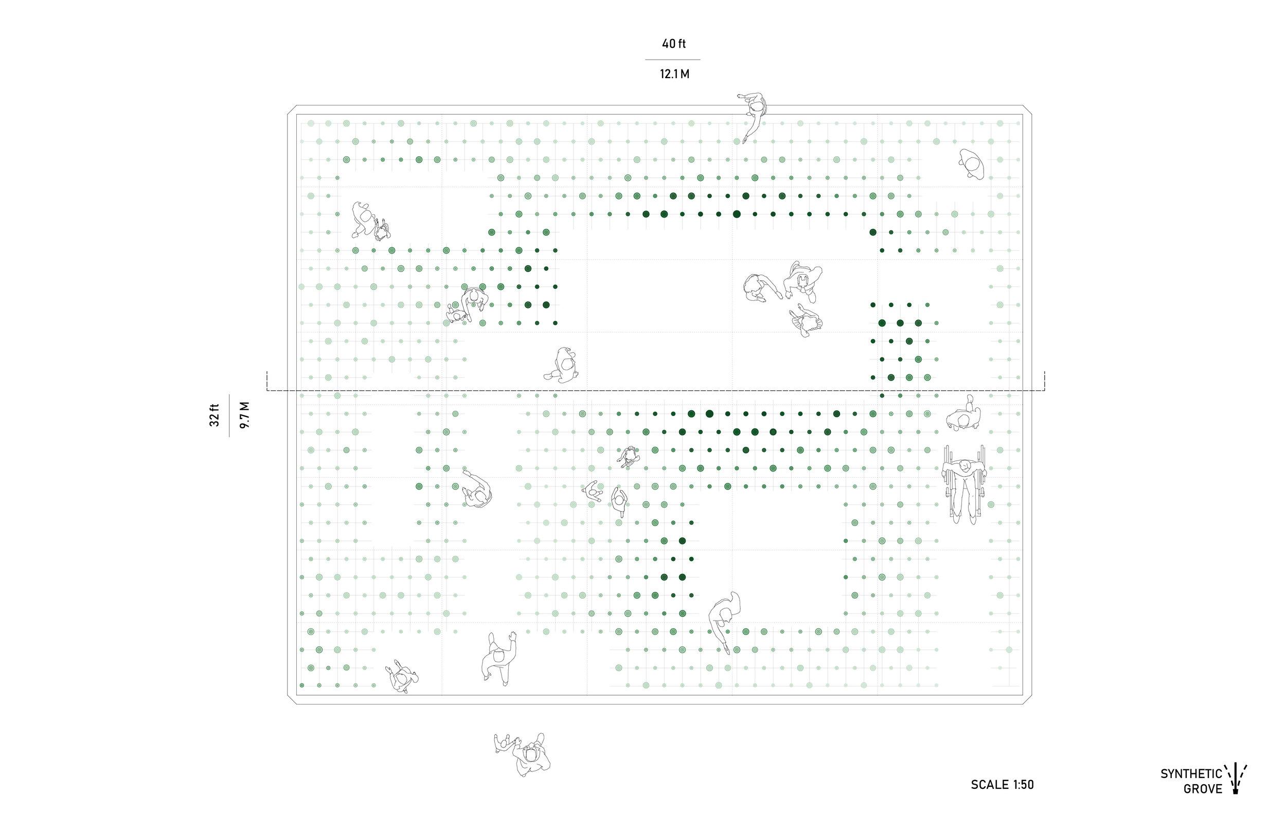 ALBUM_1_LP2.jpg