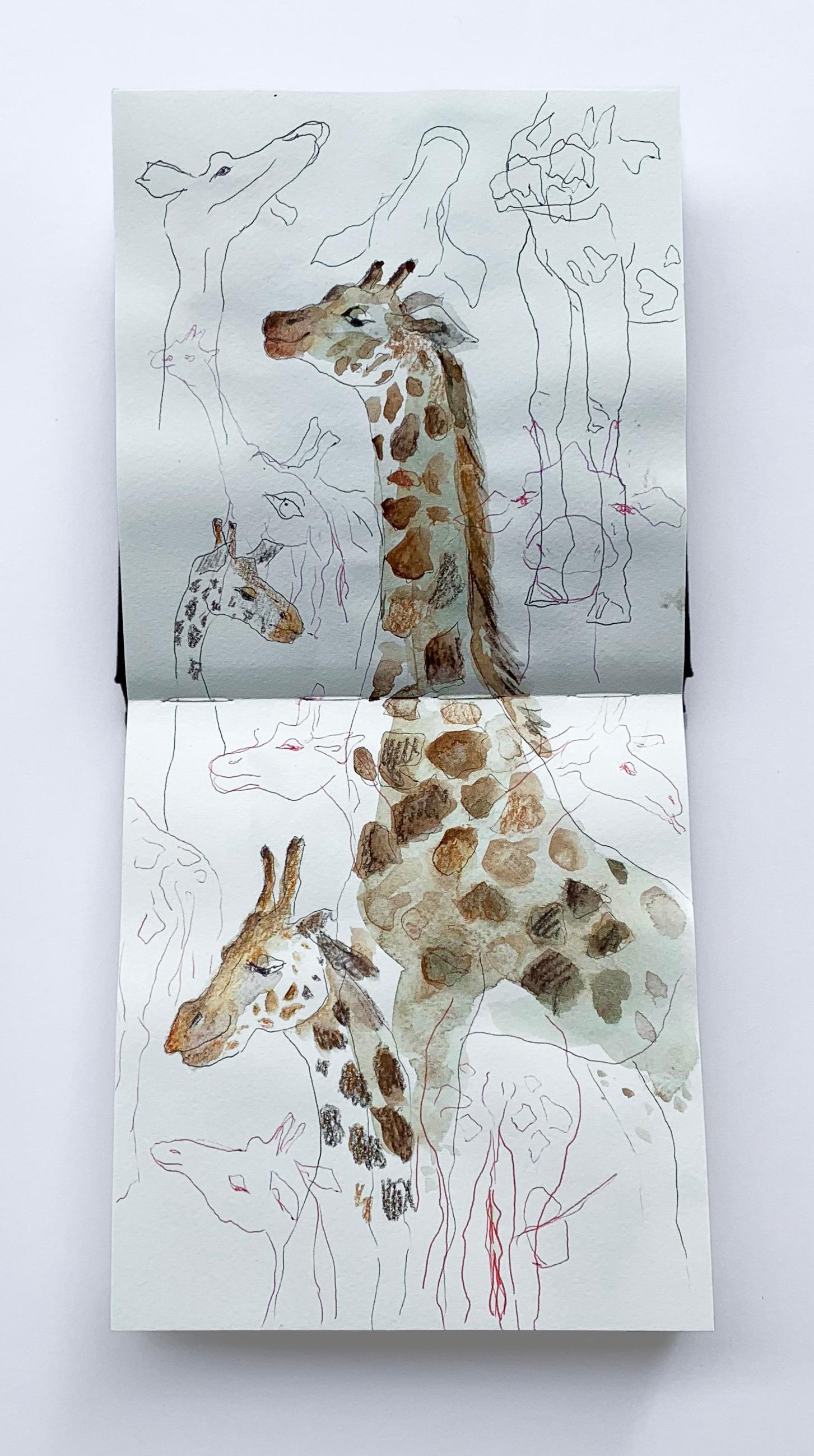 giraffe_portfolio1.jpg