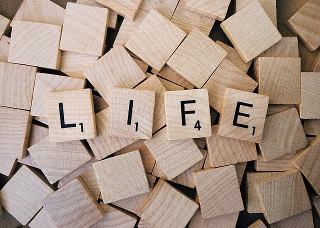 Life-coaching-advice-maple-grove (3).jpg