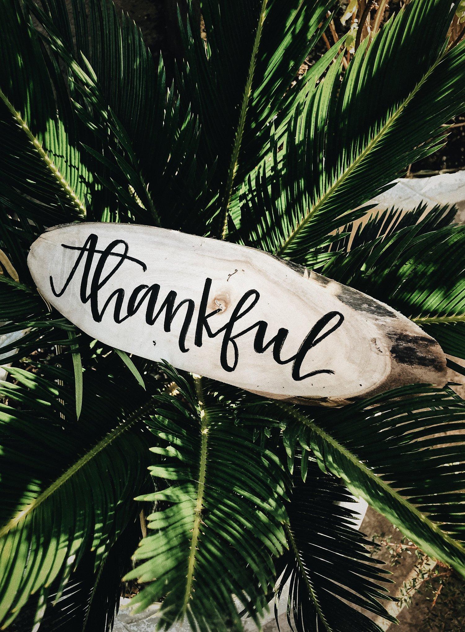 gratitude-thanksgiving-life-coach-maple-grove.jpg