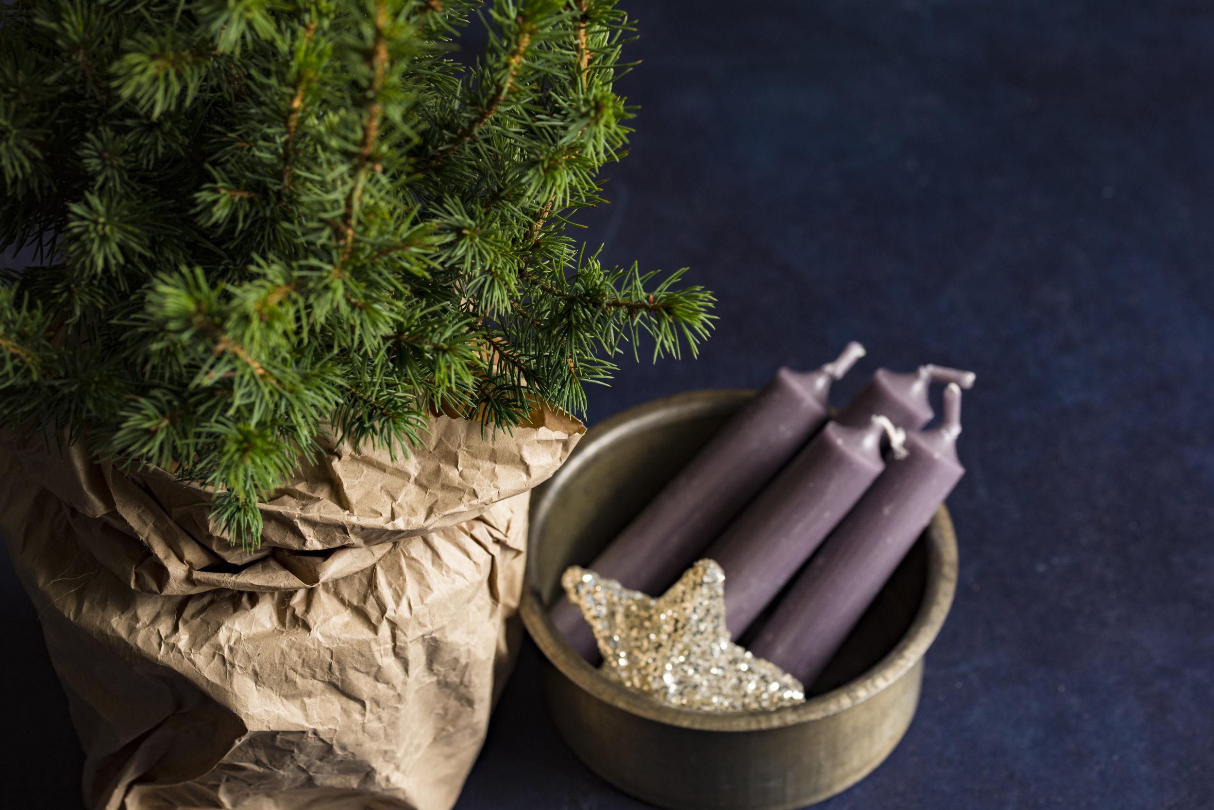 Advent-Christmas-life-coach-maple-grove.jpg