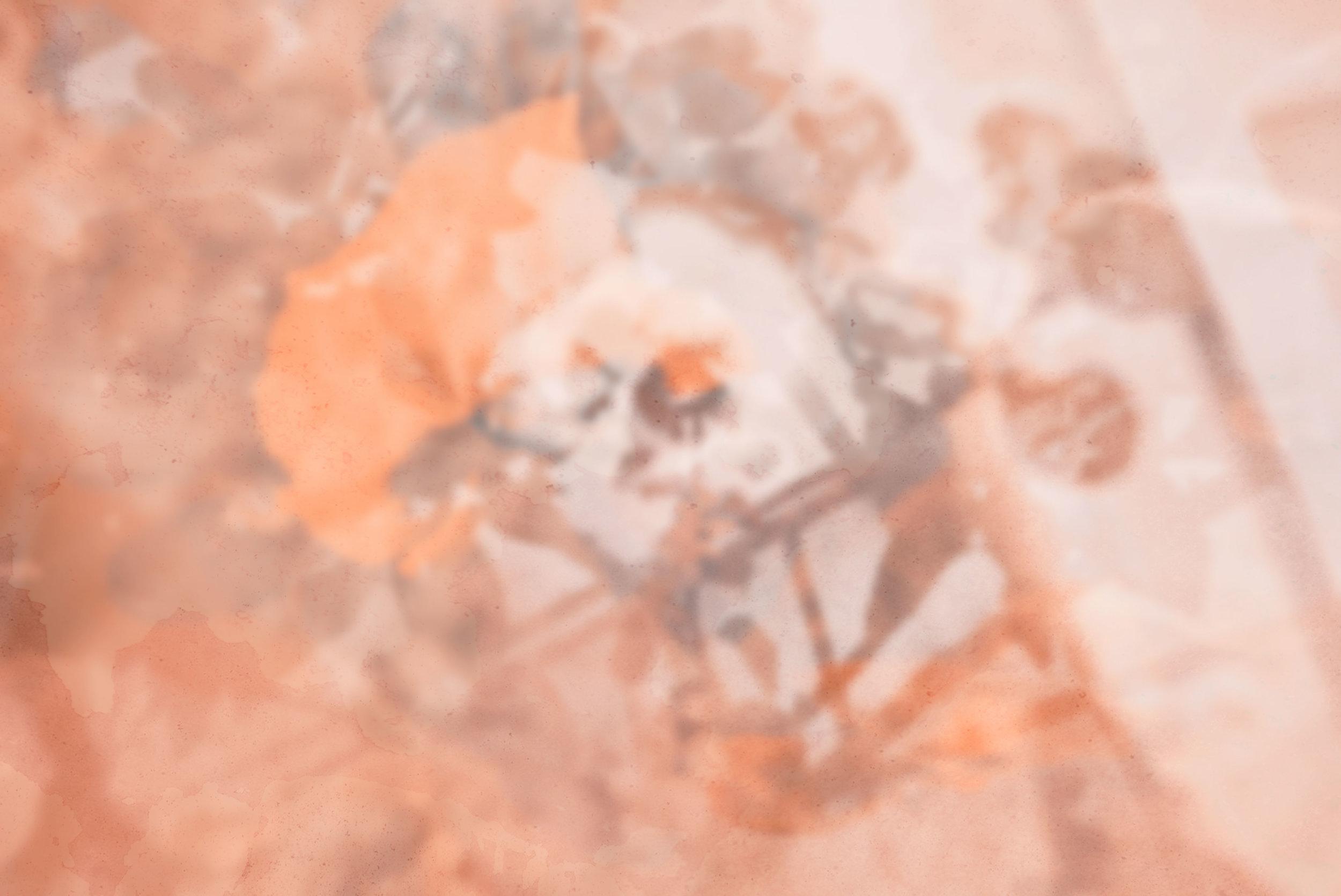 ↑ Fig.4  Background principale dell'album. «Il background ottenuto è il risultato di più scatti fotografici fusi nella stessa immagine grazie alla tecnica dell'esposizione multipla. A seguire in basso, alcune foto prima della post produzione».