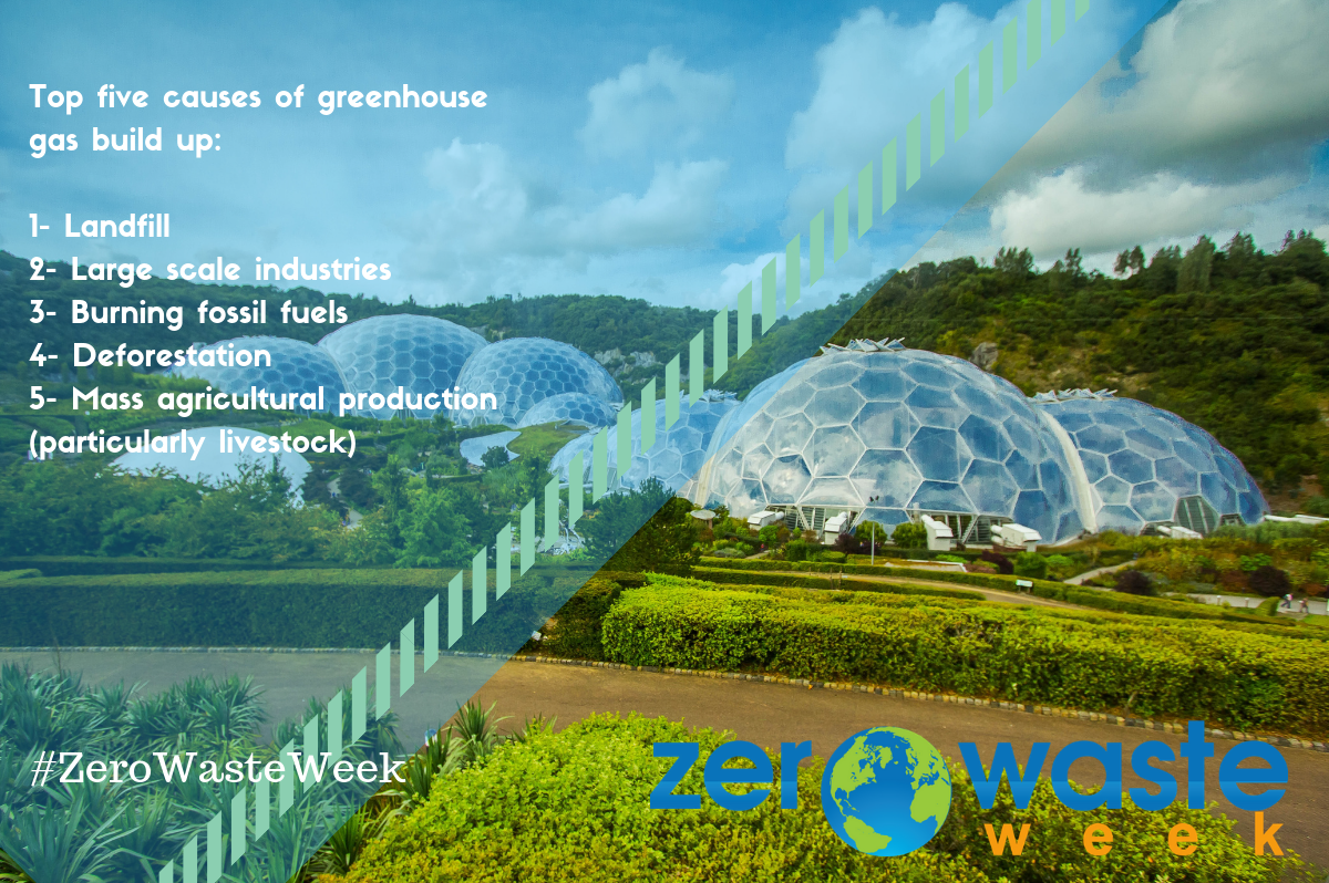 top-5-causes-of-greenhouse-gas-buildup.png