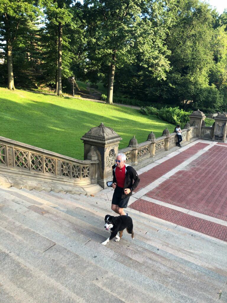 Arnie Katz central park.jpg