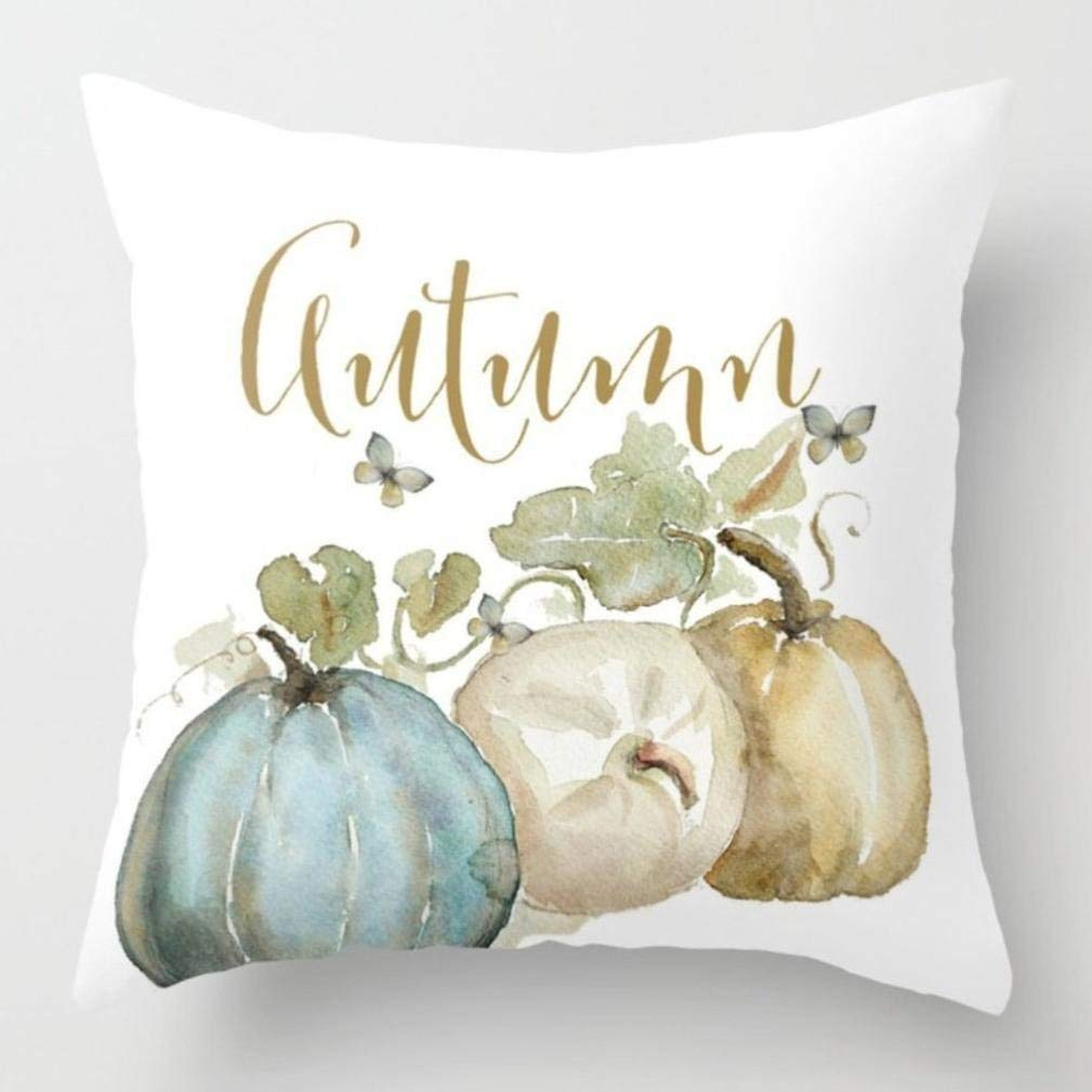 Amazon autumn pillow cover amy dong.jpg