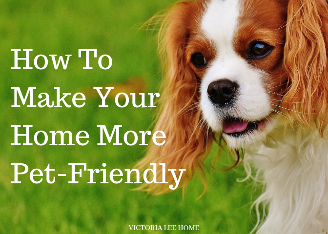How To Make Your Home More Pet-Friendly.png