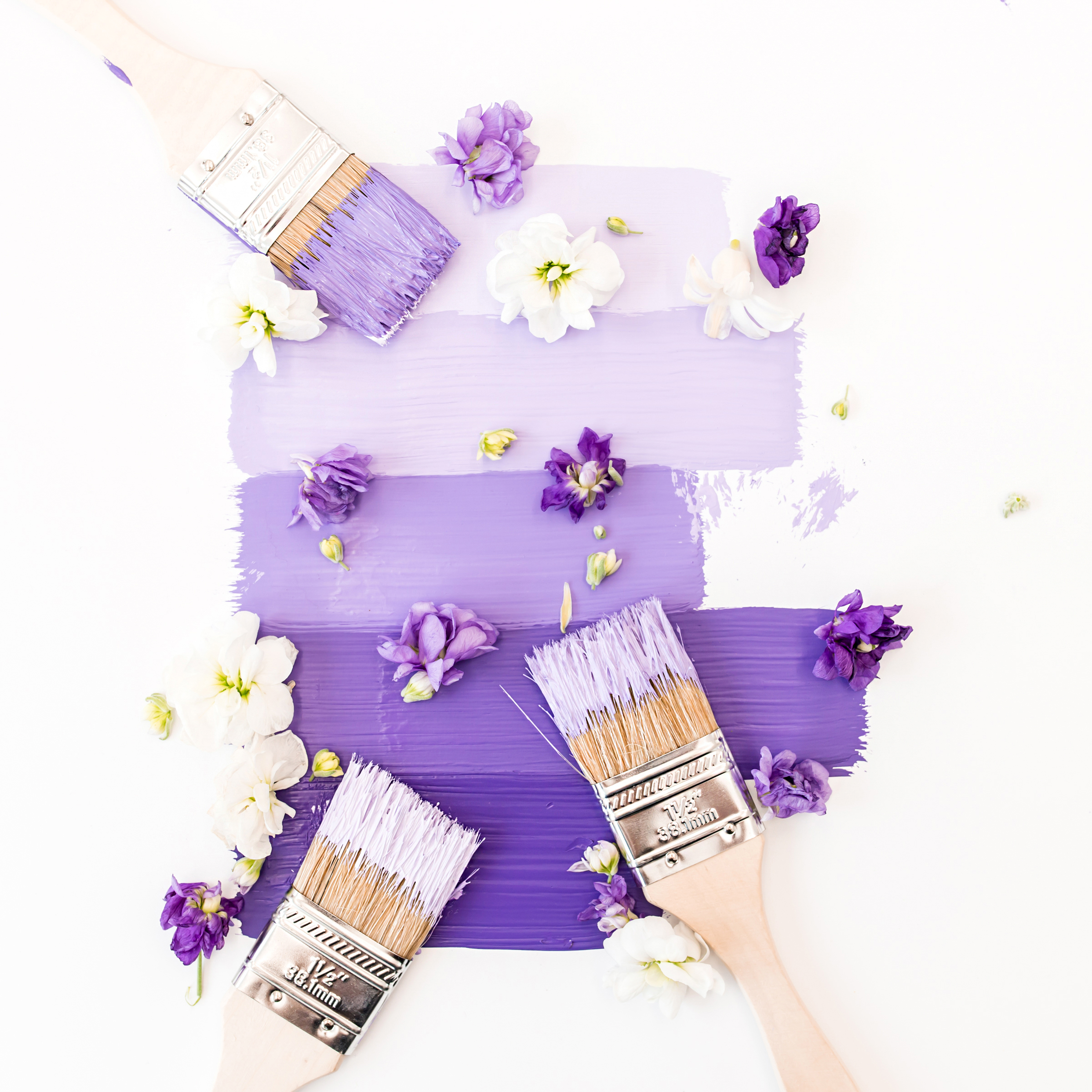 Violet and lavender paint