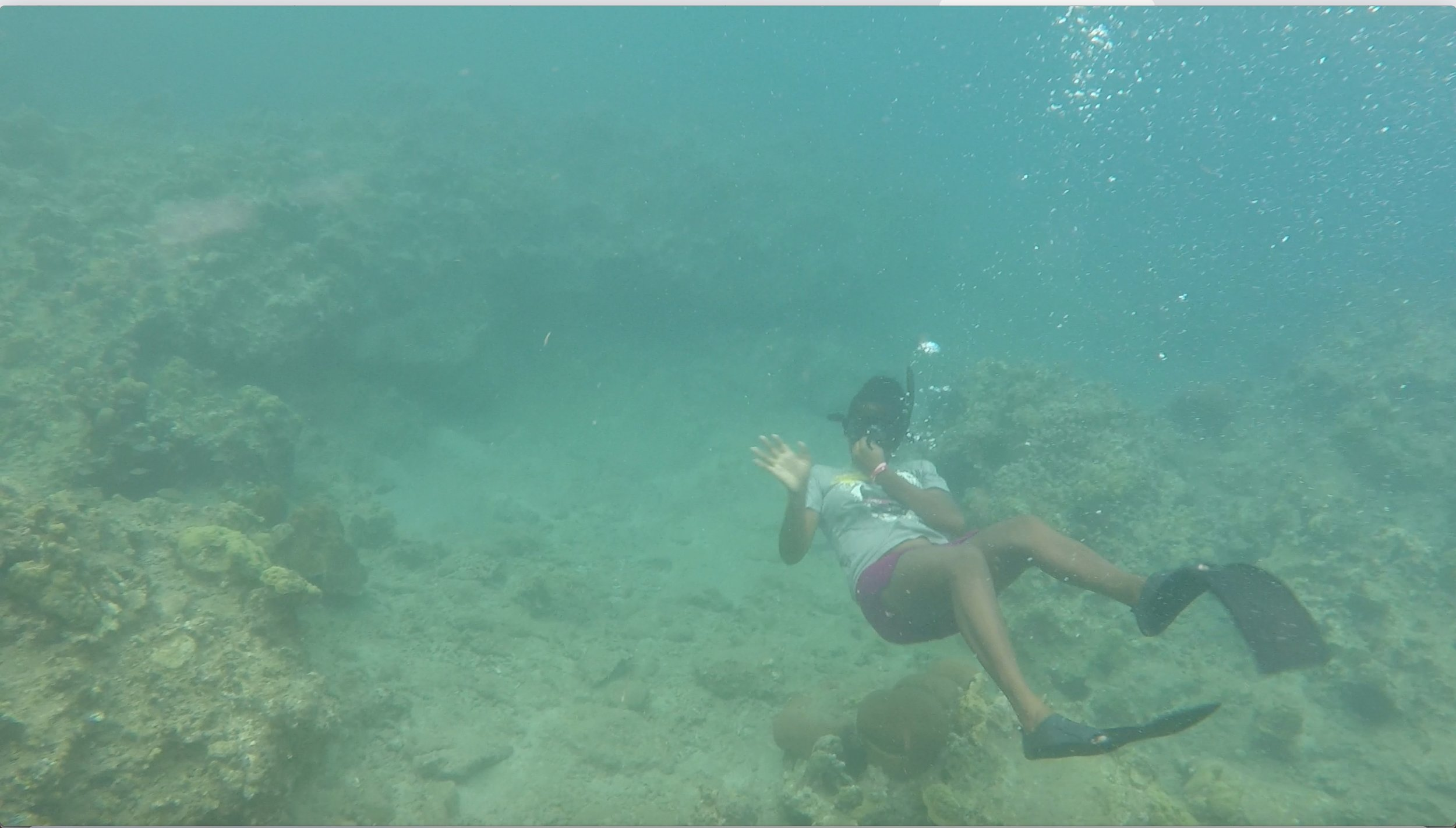 alisha snorkeling.jpeg