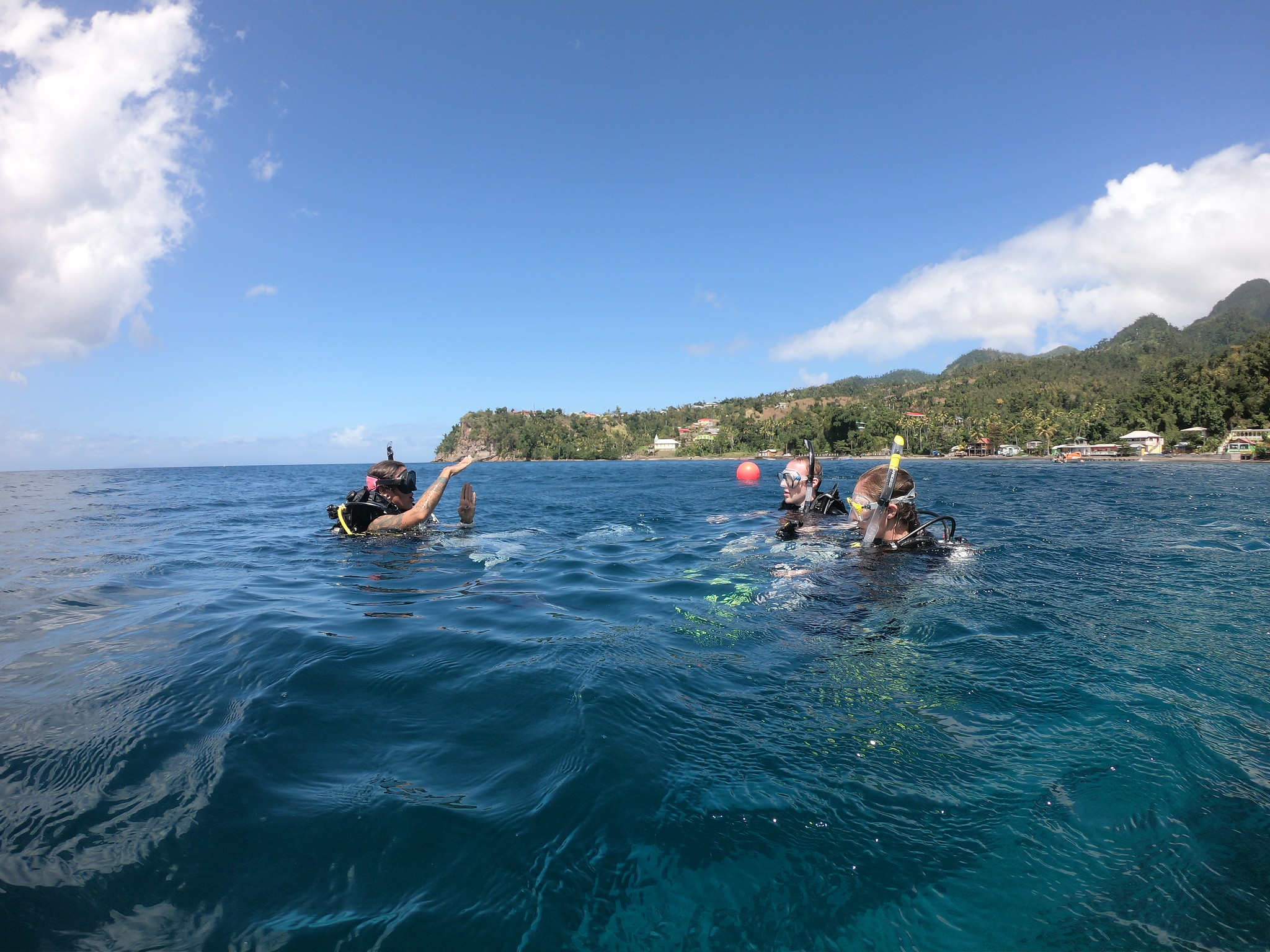 kayla salt scuba diving dominica west indies toucari bay.jpg