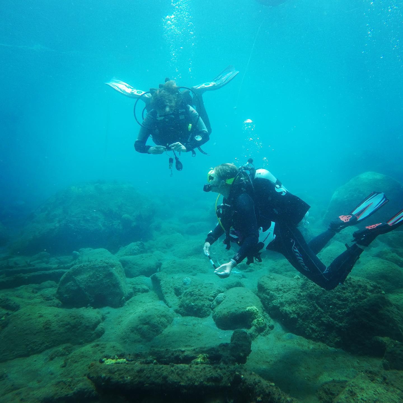 marie emily marine archaeology dominica salt dive.jpg