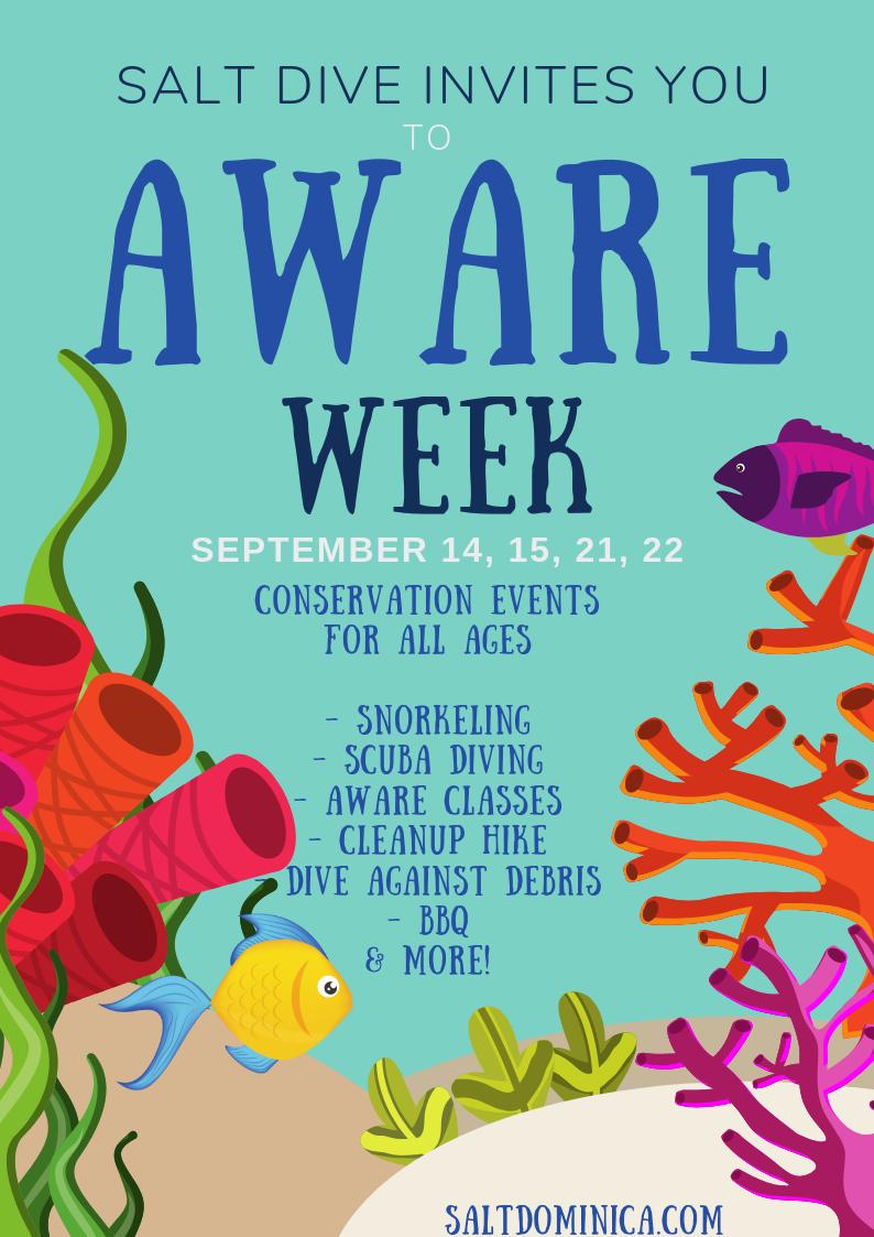 project aware aware week salt dive dominica 2019 toucari bay padi dive resort shore diving dominica.png