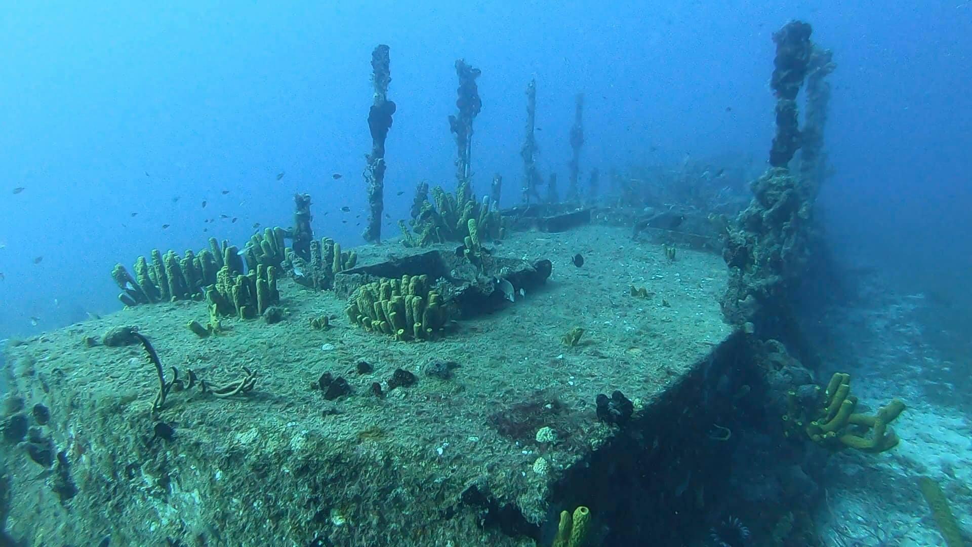 wreck diving dominica salt dive underwater photography roni bat-levi.jpg