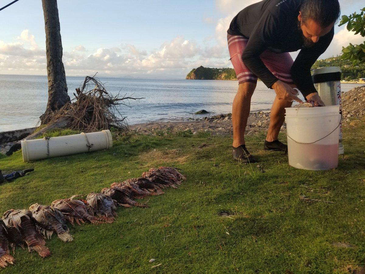 We make responsible seafood choices -