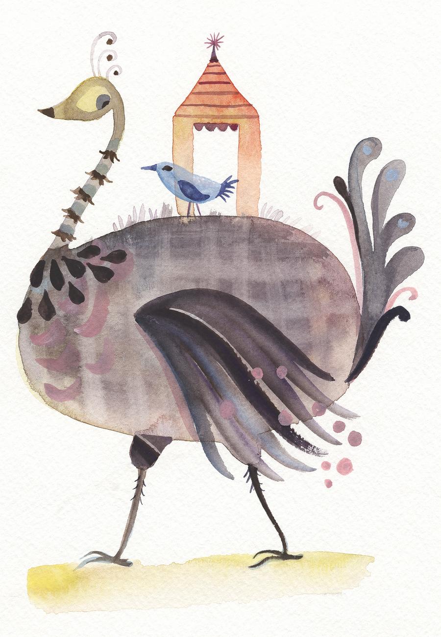 ostrich 2.jpg