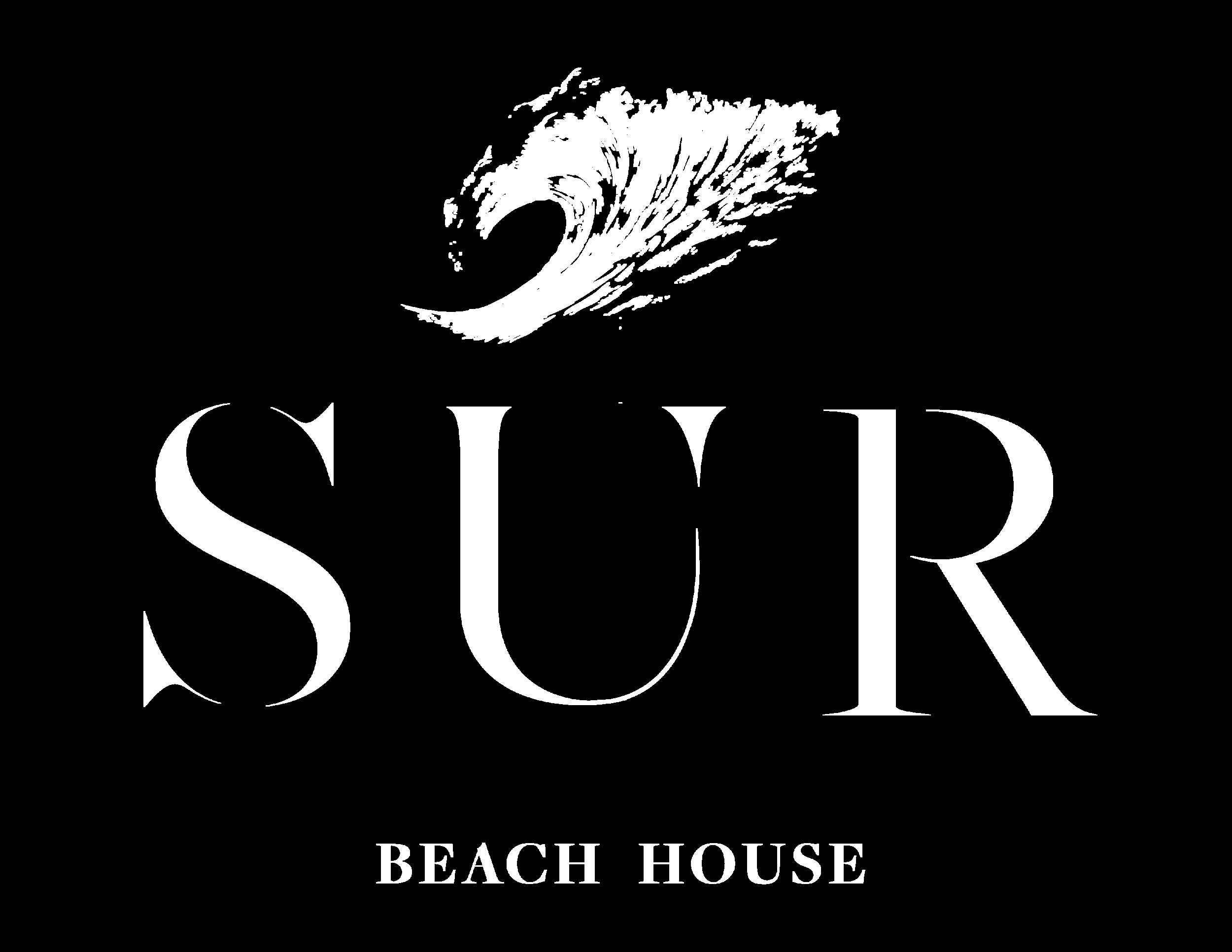 LOGO SUR 2018-03.png