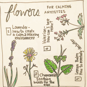 Flowers for Calming Anxieties Spread - Pitch by Cl Hadley Twinbrook1-Lavender: How to create a calm and relaxing environment?2- Chamomile: soothing words for the ego3-Lemon Balm: how to mentally declutter4-Valerian: how can I best relax?