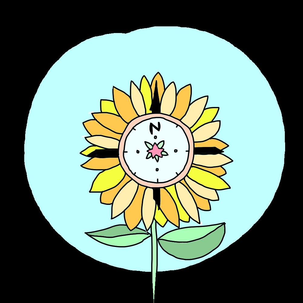Sunflower Compass.png