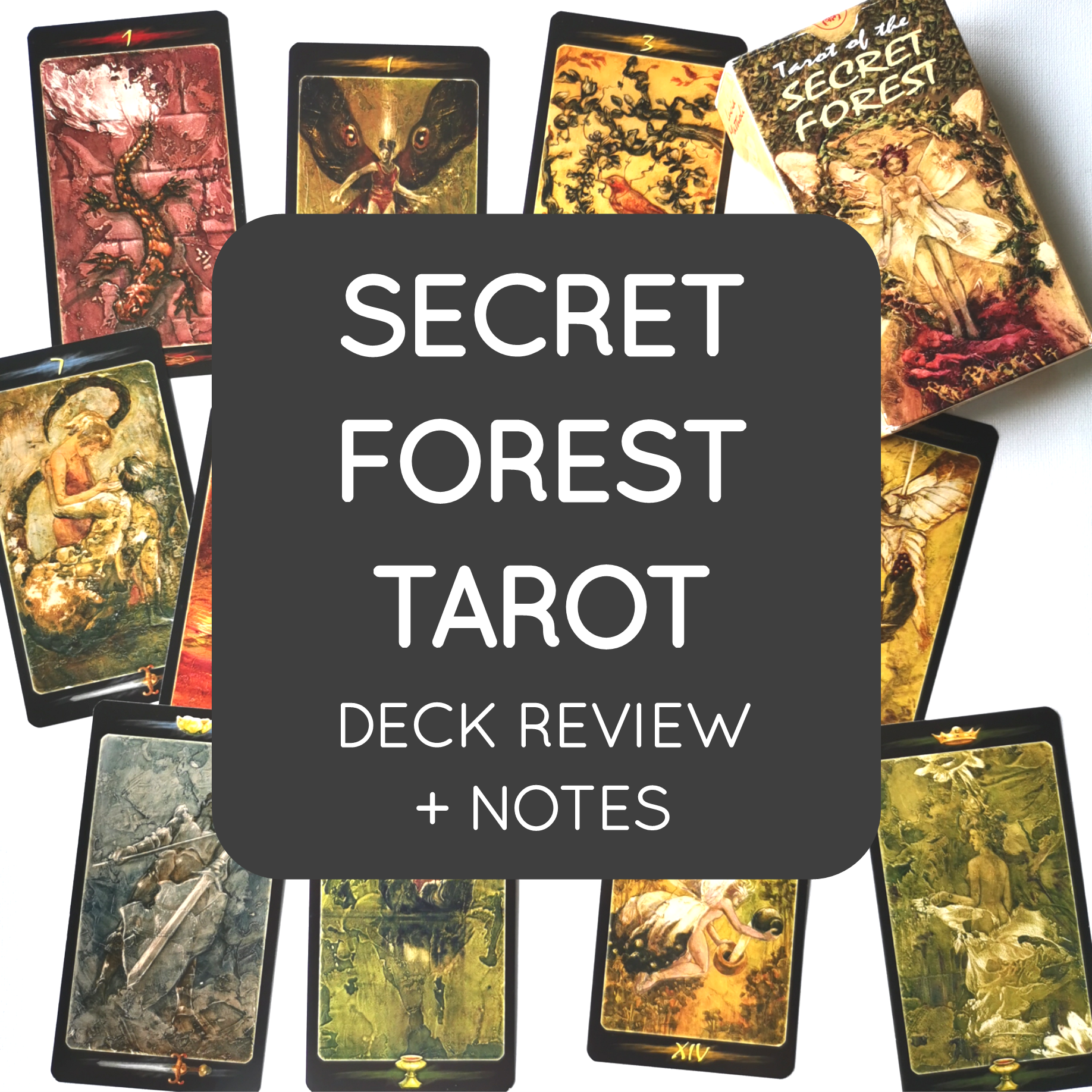 06-secret forest tarot.png