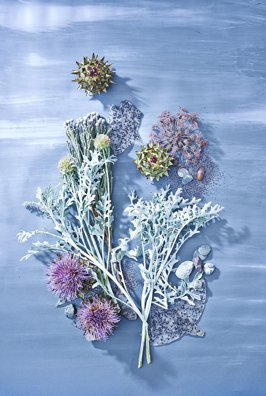 Botanical-still-life-air-blue_1_original.jpg