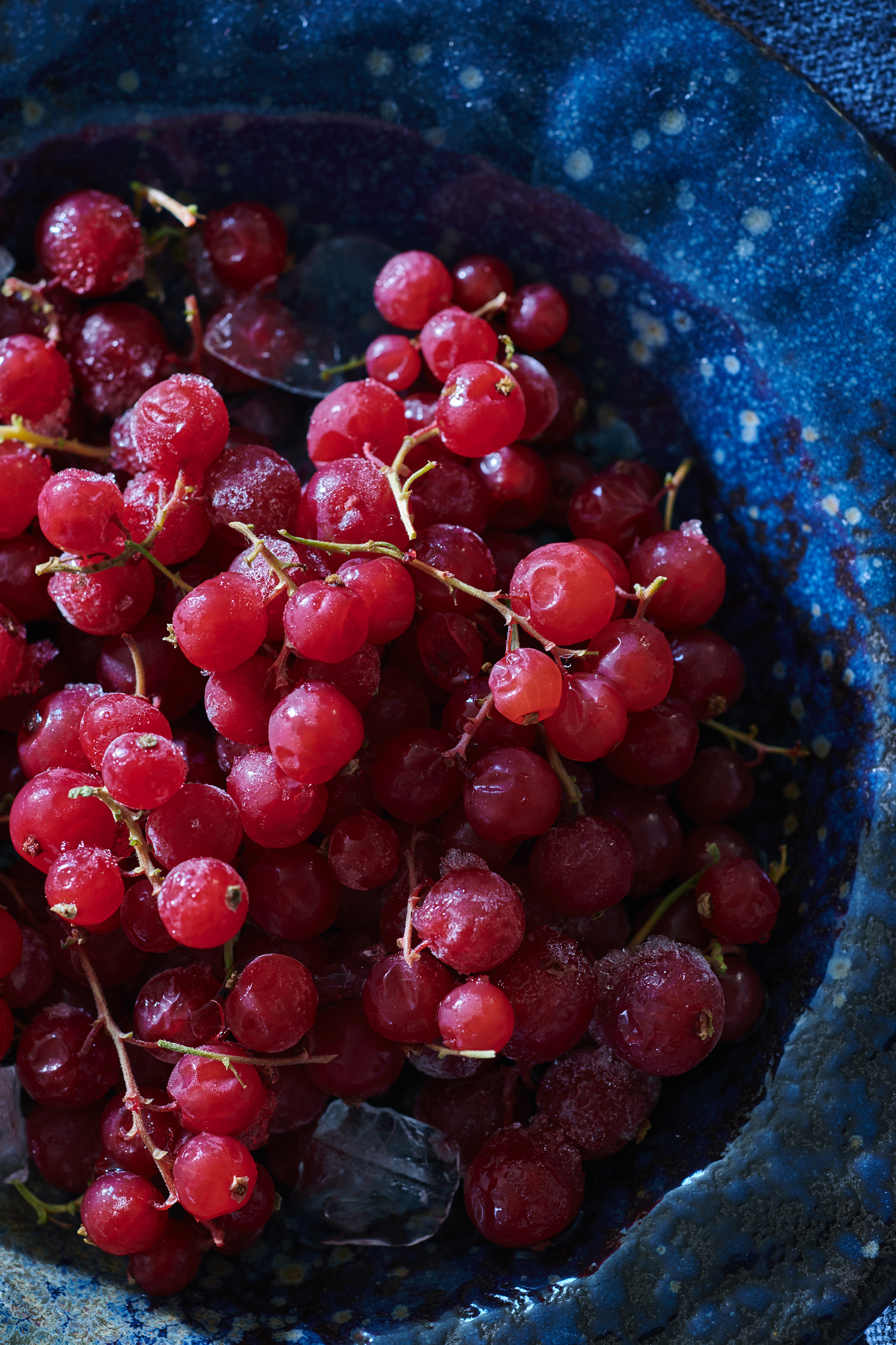 Red-Currants_0021_original.jpg