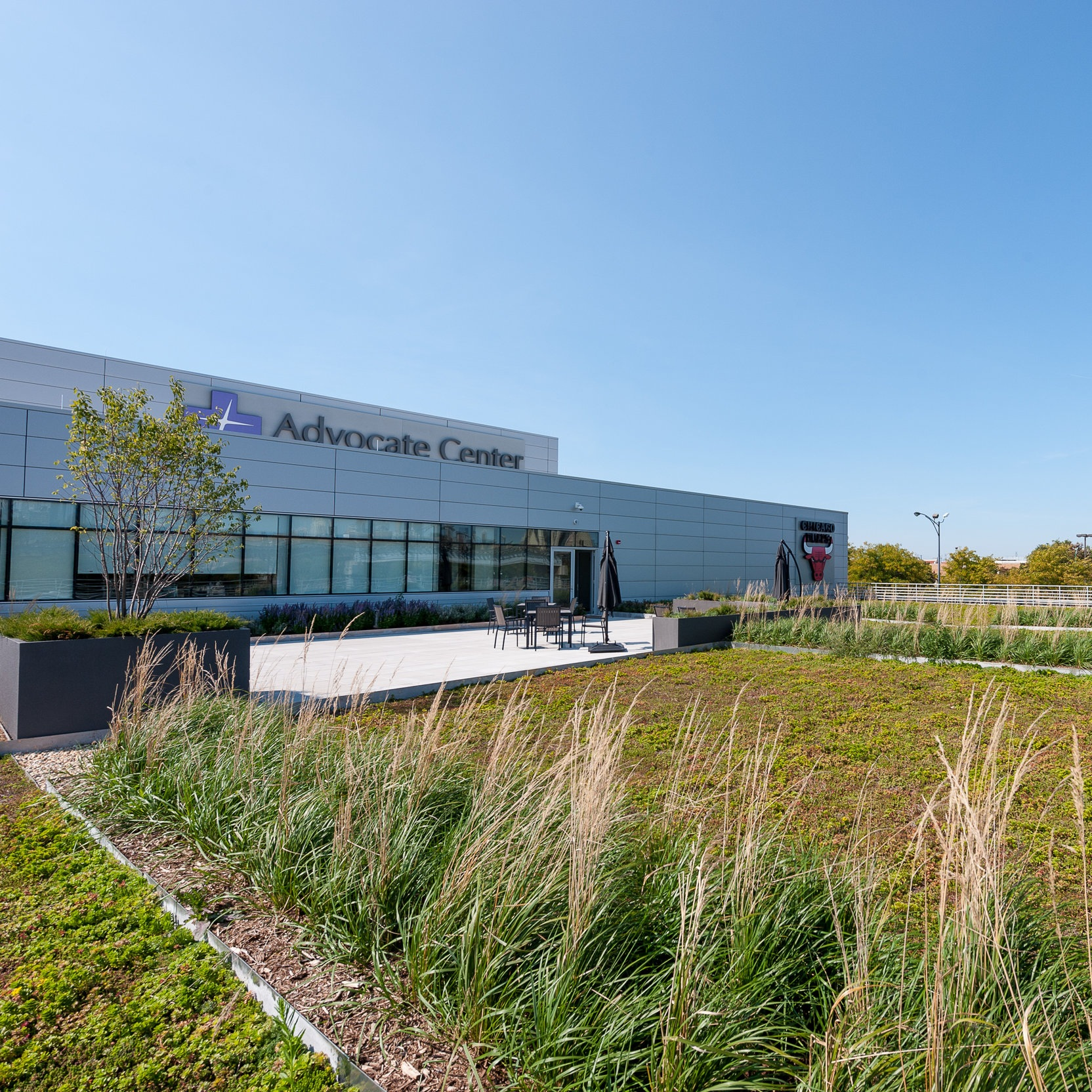 ADVOCATE BULLS TRAINING CENTER  Landscape Green Roof + Construction  Chicago, Illinois