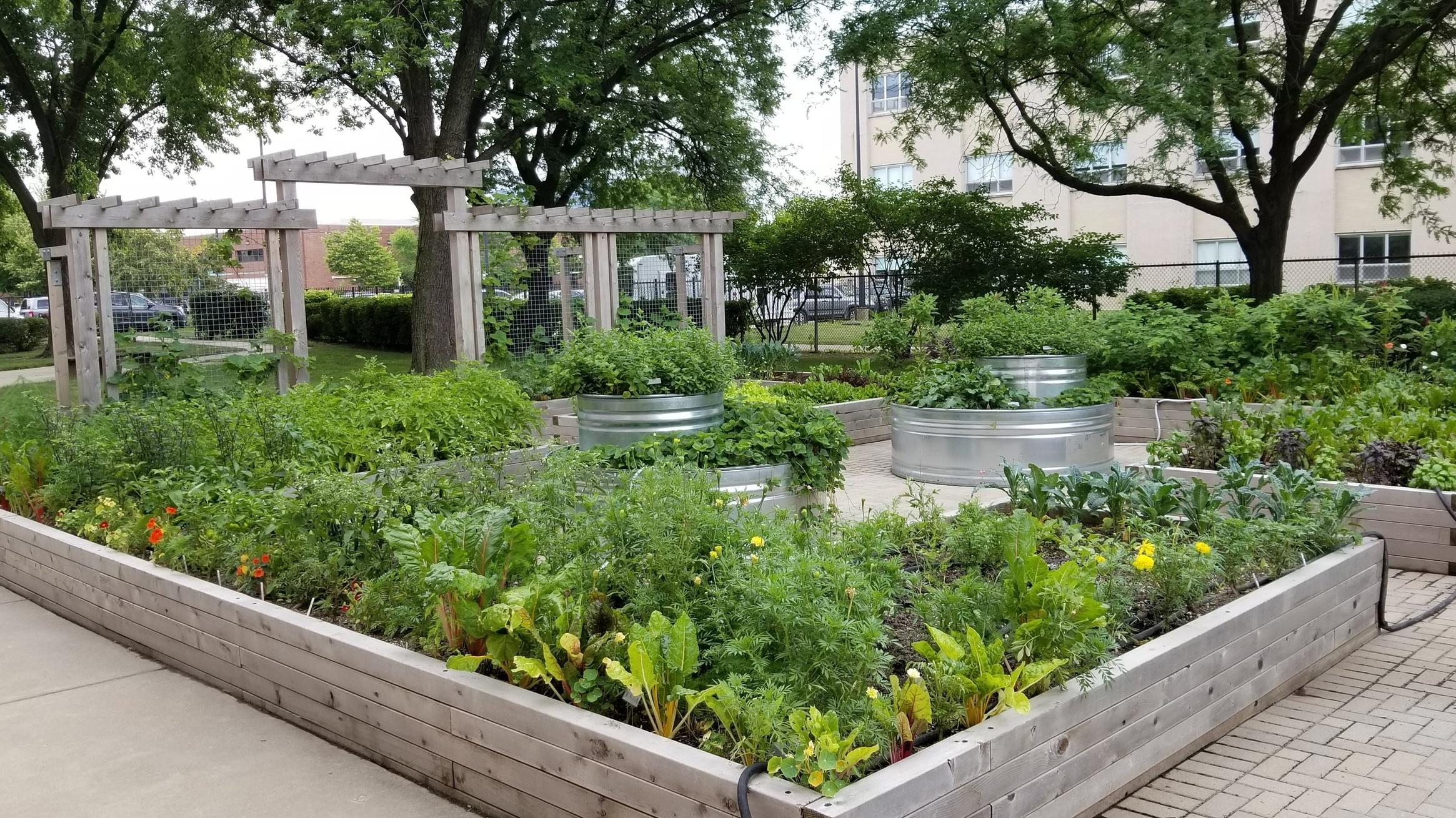 Community Gardens Design + Installation