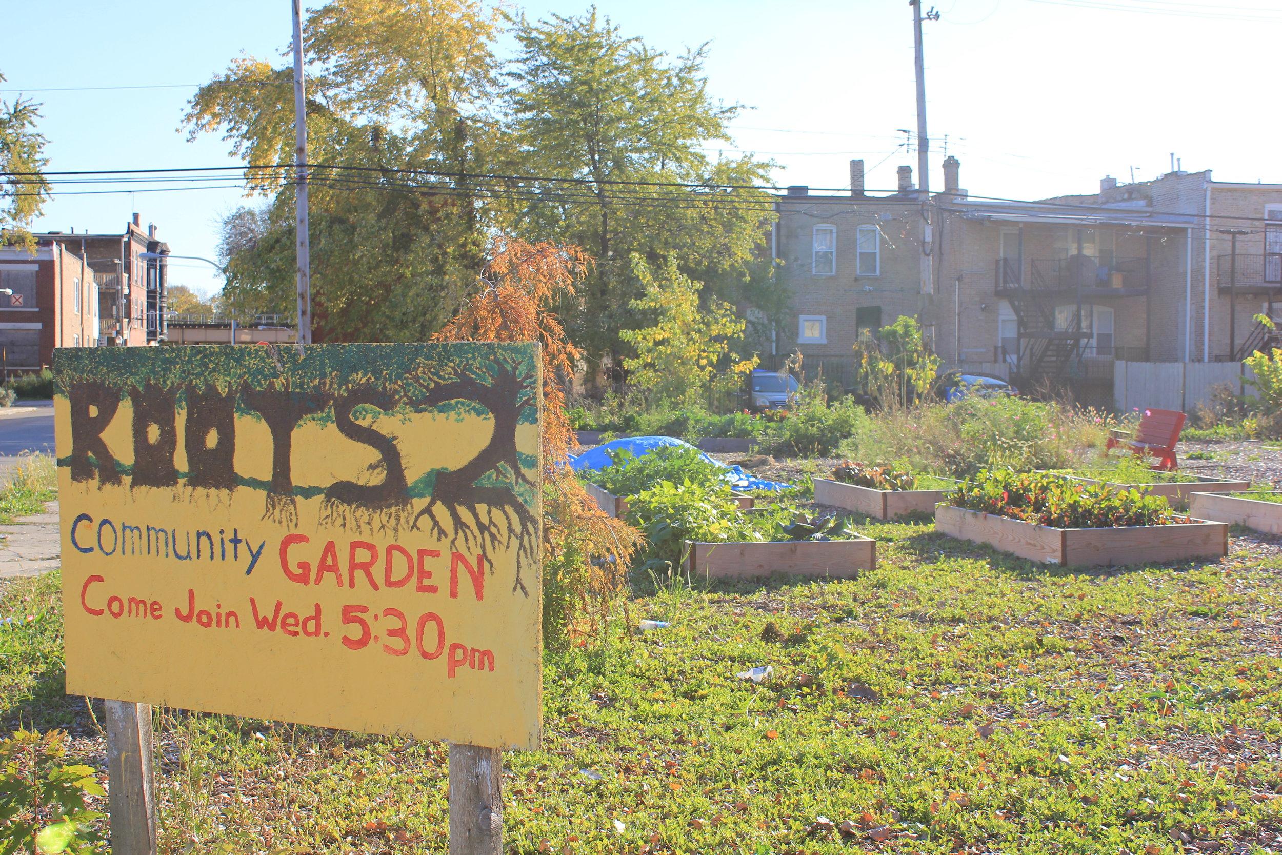 Roots Community Garden.JPG