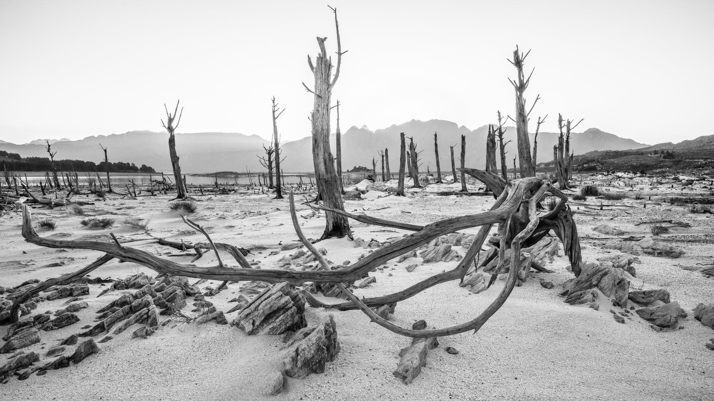 Barren Lands.jpg