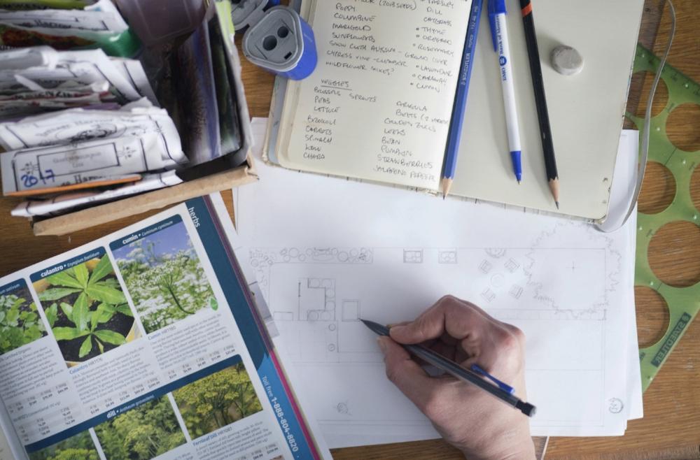 Getting down to backyard garden design.