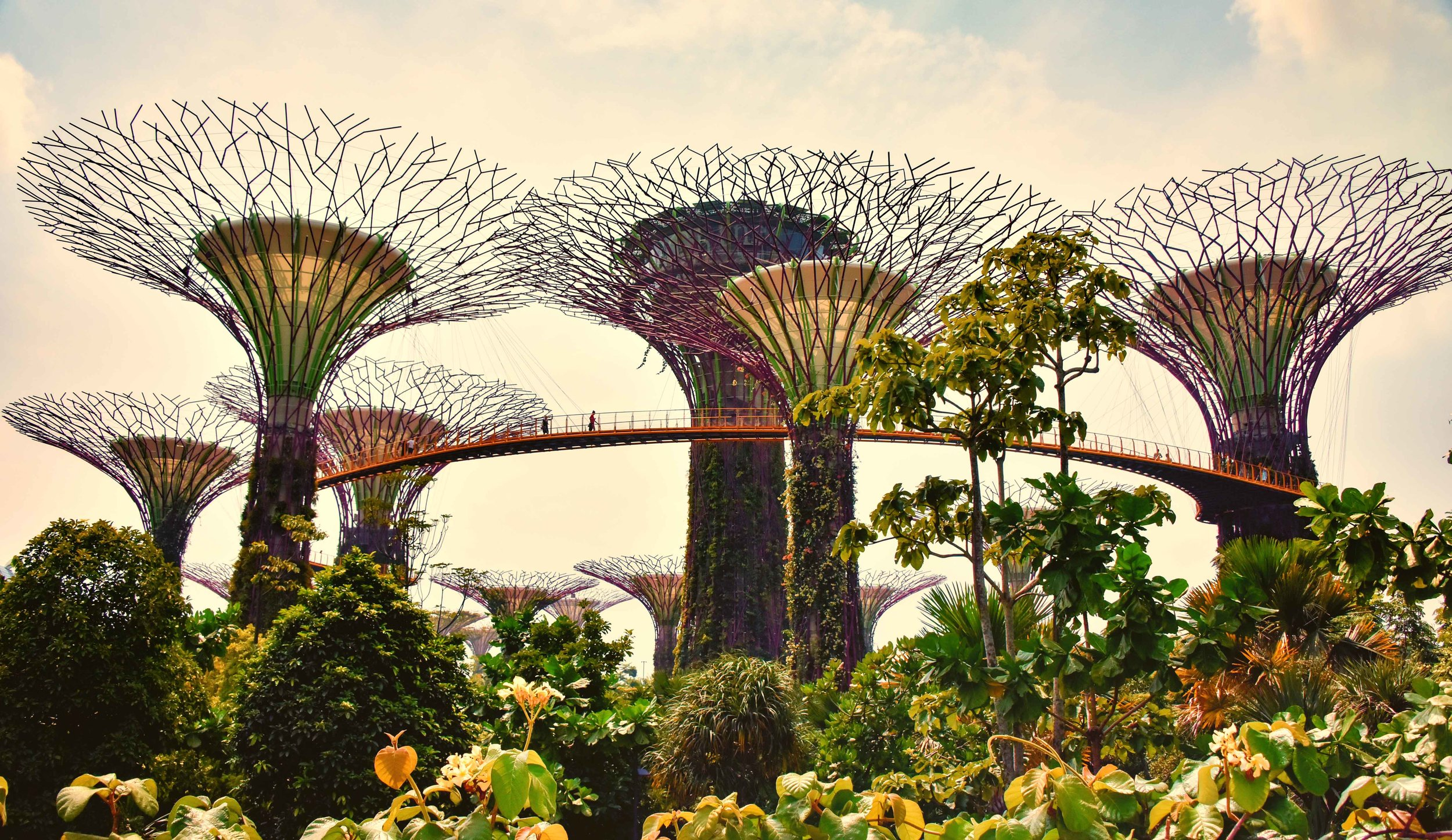 Singapore is the city-poster-child of biophilic design. Retrieved from  Wikimedia Commons , Jan 10, 2019.
