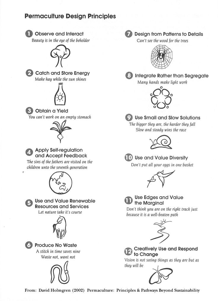 12 principles accompanied by a plethora of practical proverbs. Holmgren, 2002. Retrieved from  https://i.pinimg.com/736x/f5/f3/0f/f5f30fca4a4519a275434df670270459--permaculture-garden-permaculture-design.jpg