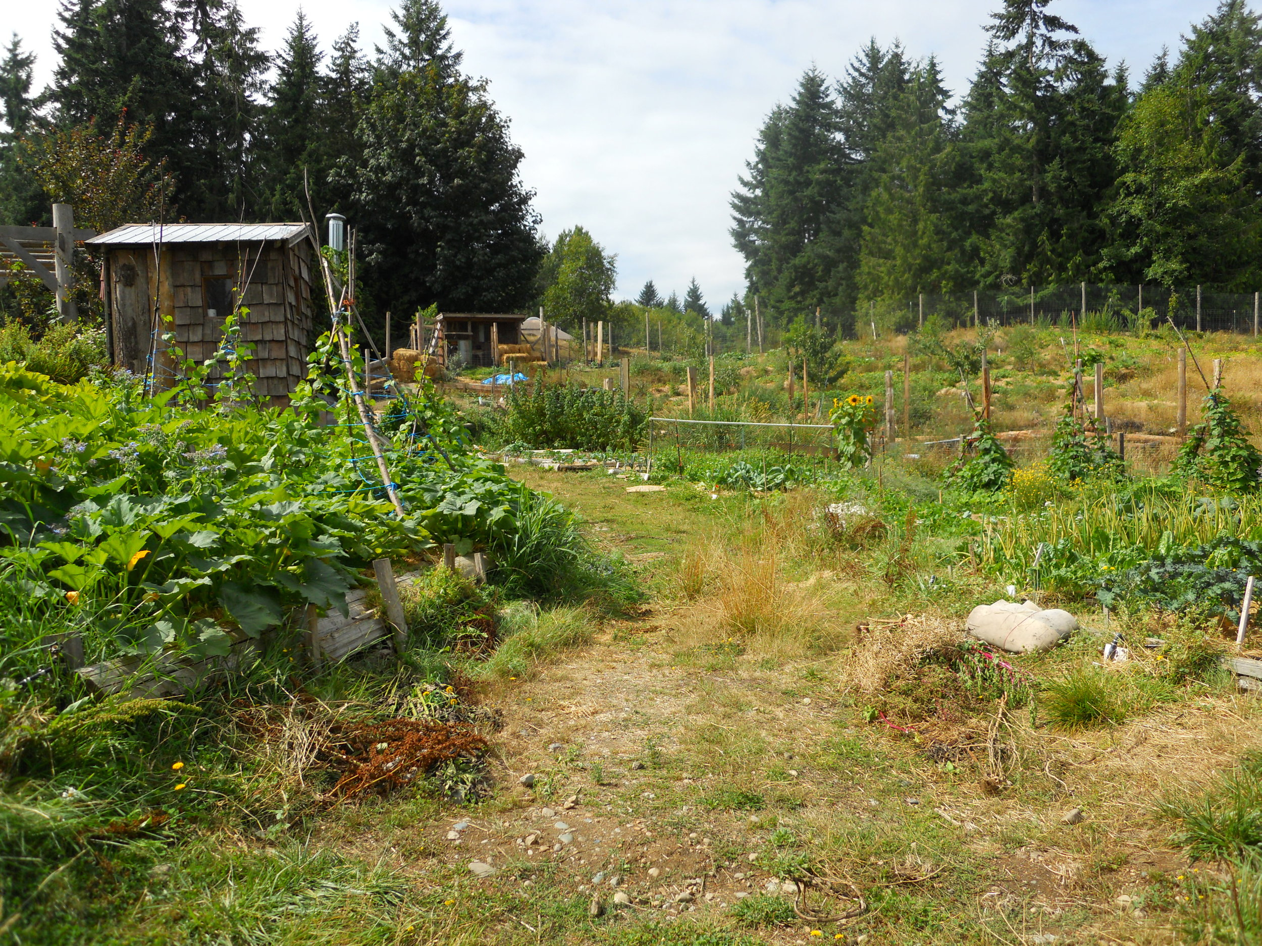 Permaculture is a recipe for sustainable systems-management. OUR Ecovillage, 2011.