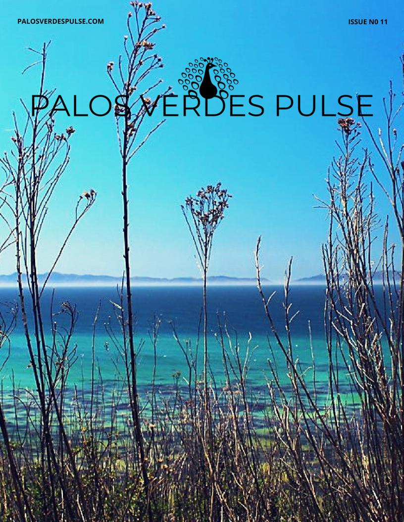 Palos Verdes Pulse 4