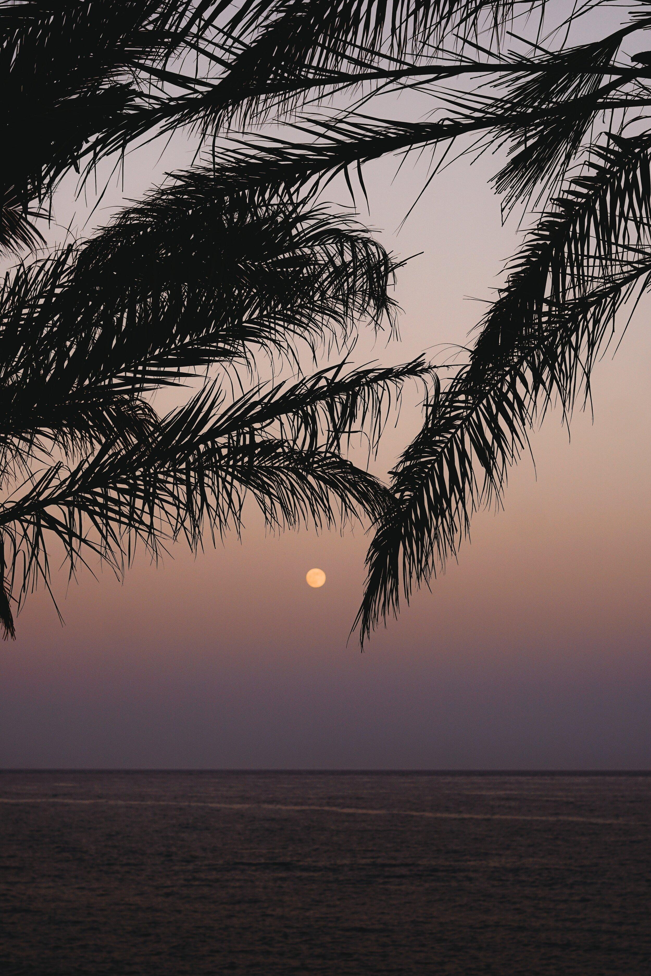 beach-clouds-full-moon-1253720.jpg