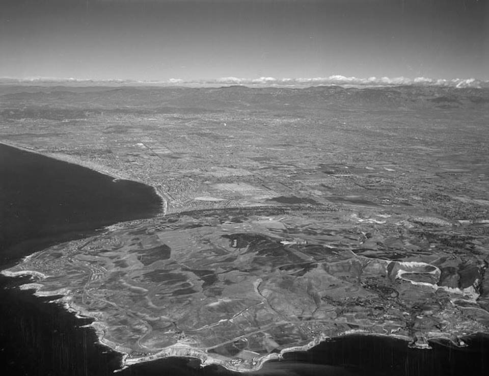 The Palos Verdes Peninsula in 1950