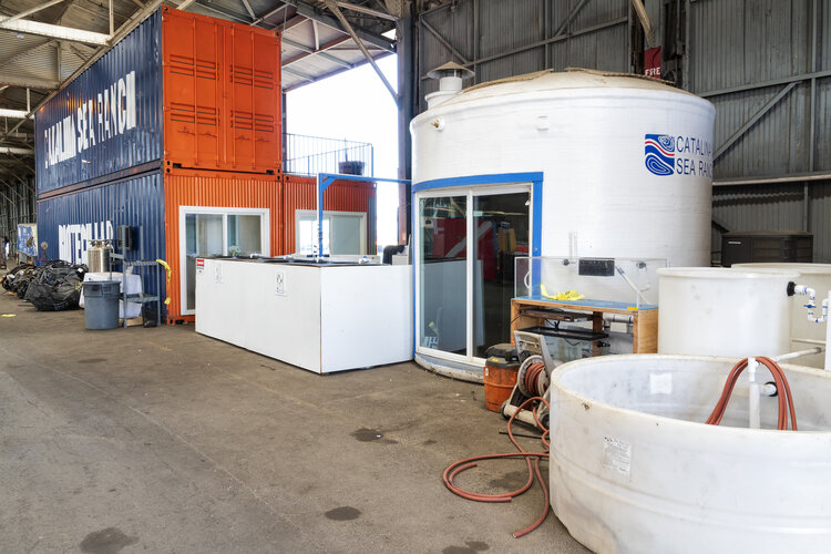 3 Dock 1 Interior 0005.jpg
