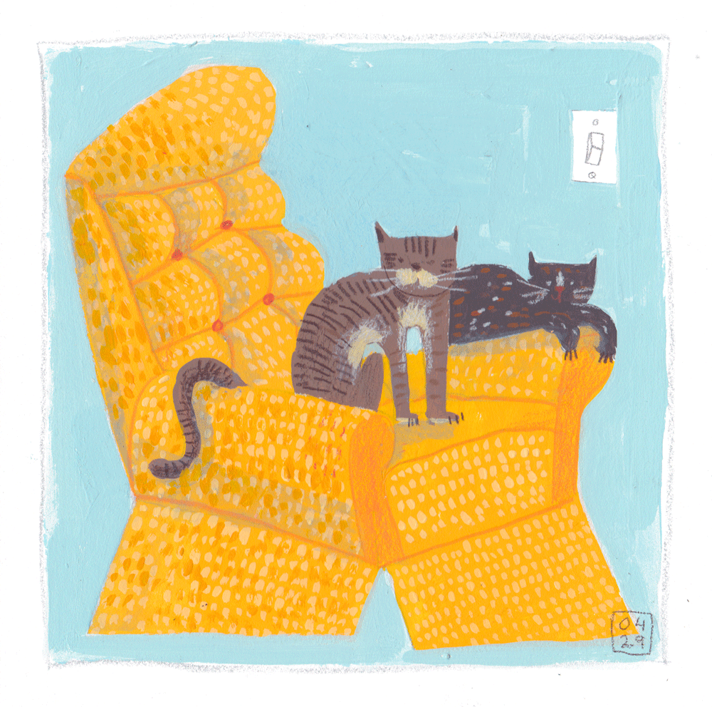 both kitties like the new yellow armchair.